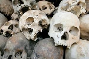 fotolia skulls
